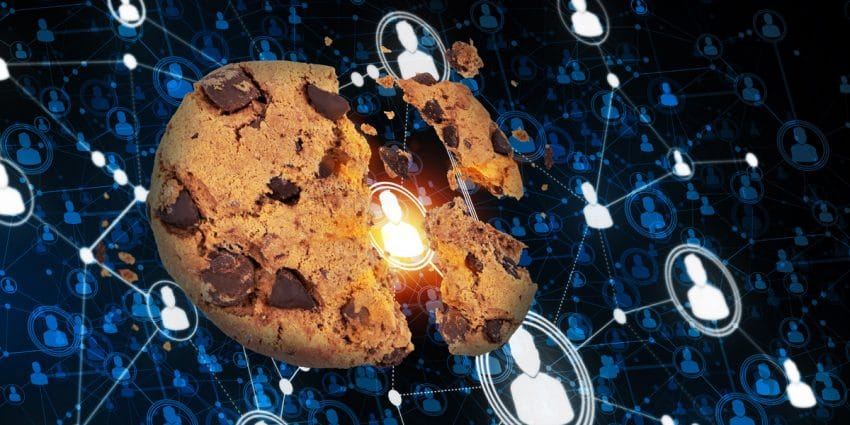 Finding Digital Advertising Success in the Cookie-less Future